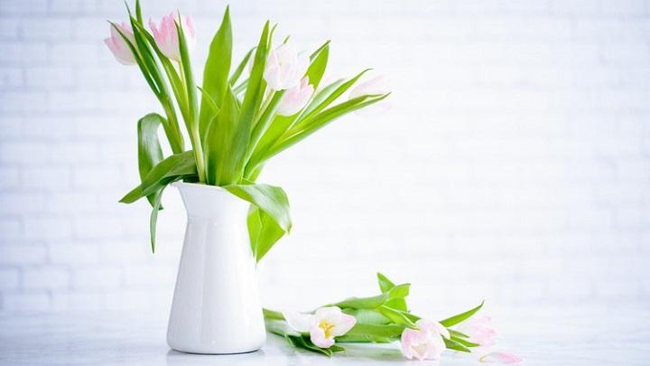 un-jarron-con-flores