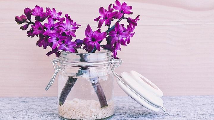 jarron-con-flores-de-color-lila