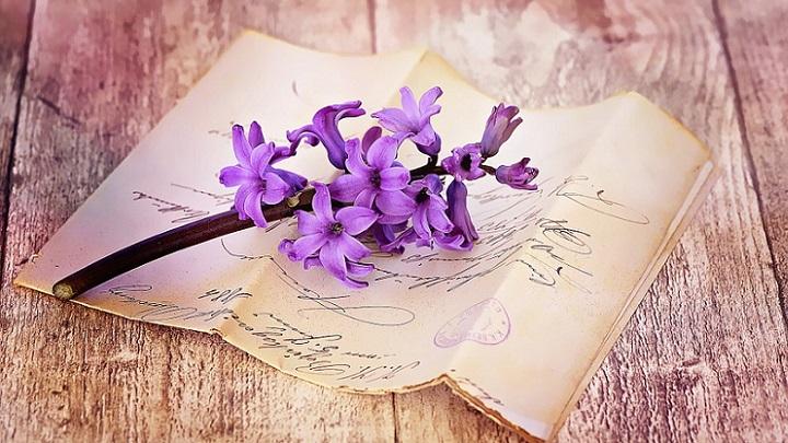 carta-y-flores