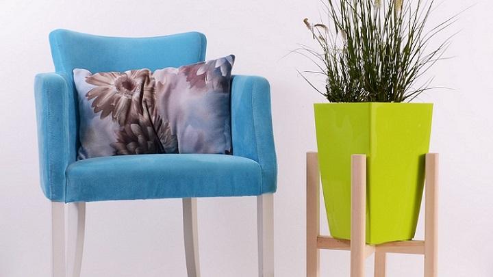 silla-alfombra-planta
