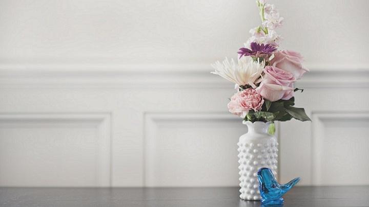 flores-sobre-fondo-blanco
