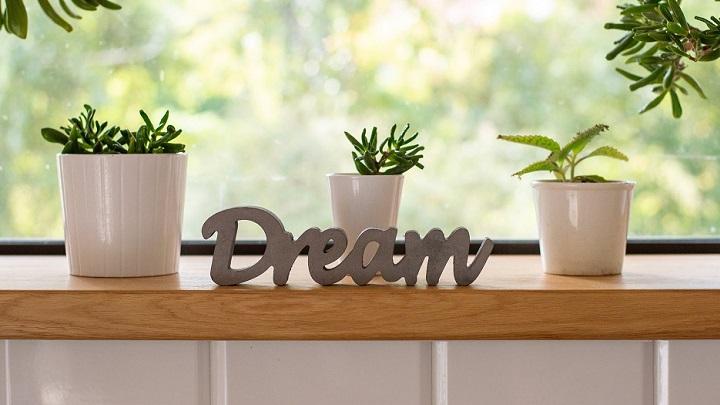 letras-y-plantas