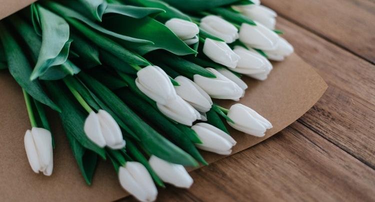 flores-de-color-blanco