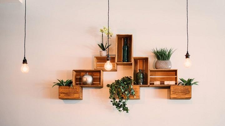 plantas-en-la-pared