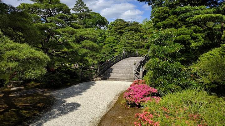 camino-de-jardin