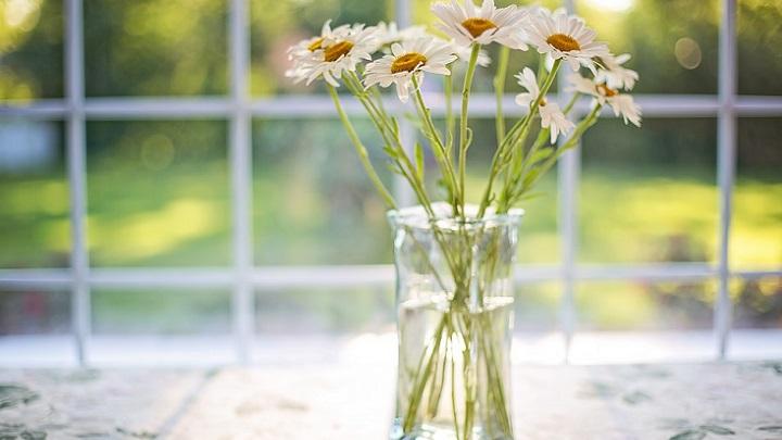 flores-en-interior-de-la-ventana