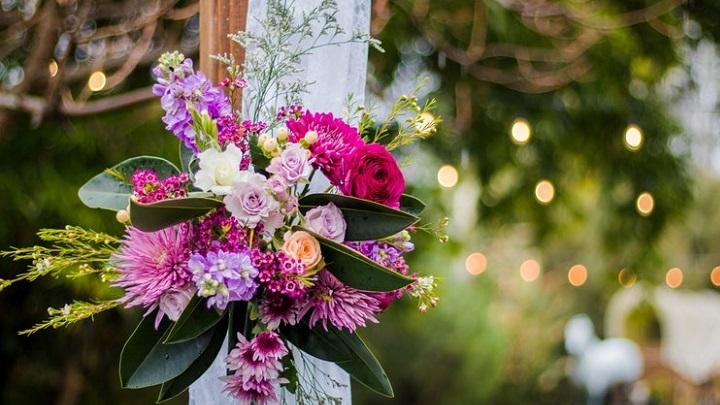 flores-en-el-campo