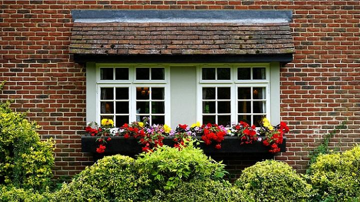ventana-con-flores