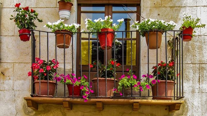 flores-en-el-balcon