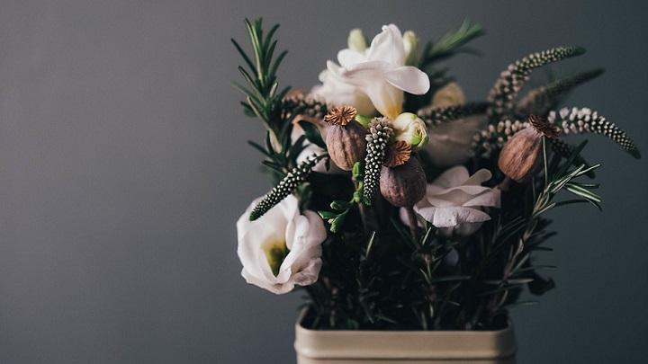 flores-en-maceta