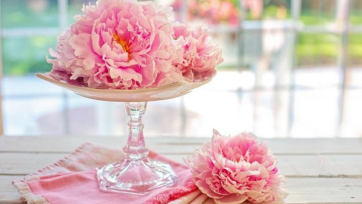 flowers in pink tones