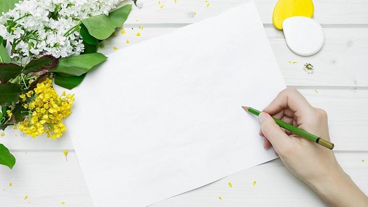 folio-y-flores