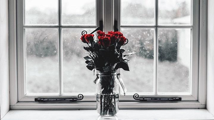 rosas-en-la-ventana