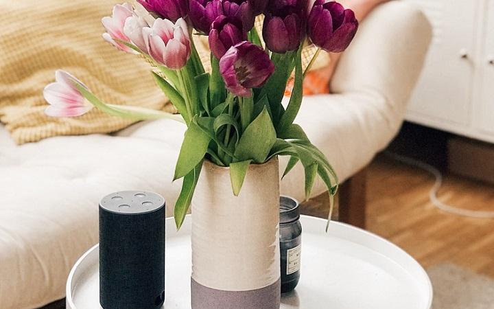 jarron-con-tulipanes