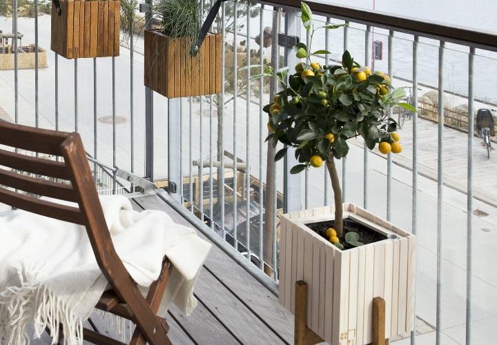 plantas-en-el-balcon