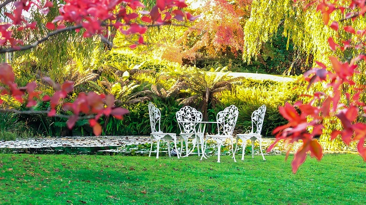 sillas-en-jardin