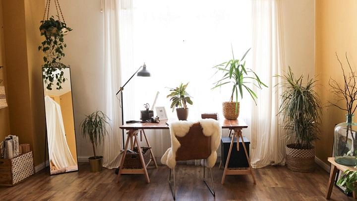 estancia-con-plantas