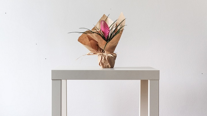 flores-sobre-mesa-blanca