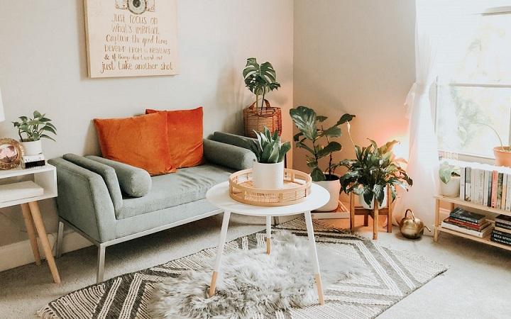 salon-con-plantas