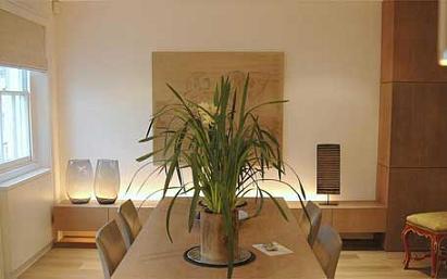 Decoraci n con plantas de interior - Decorar con plantas el salon ...